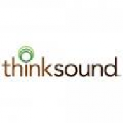 thinksound Headphones (5)